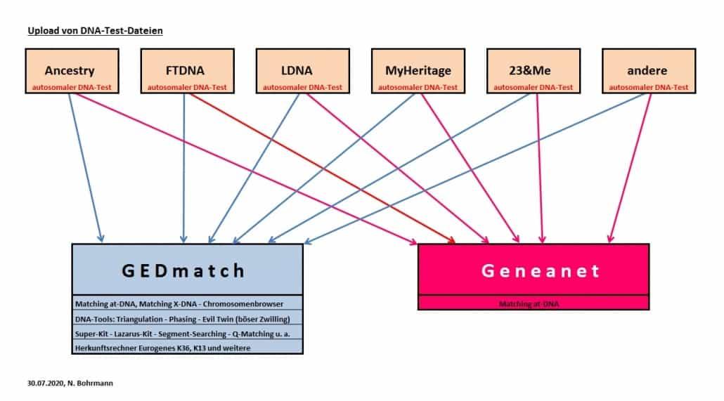 Online-Treff 13.08.2020 - die DNA-Datenbanken von GEDmatch und Geneanet
